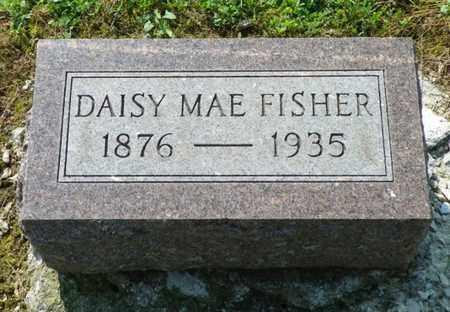 FISHER, DAISY MAE - Shelby County, Ohio   DAISY MAE FISHER - Ohio Gravestone Photos