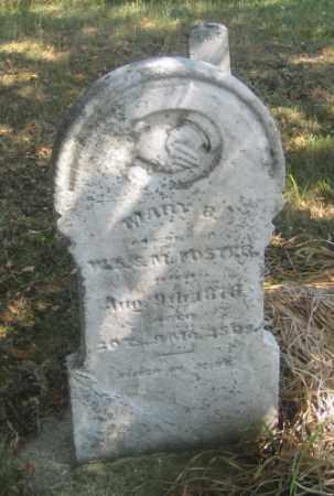 FOSTER, MARY B. - Shelby County, Ohio | MARY B. FOSTER - Ohio Gravestone Photos