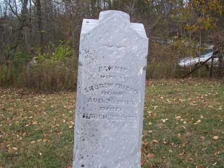 FRIEND, FANNIE - Shelby County, Ohio | FANNIE FRIEND - Ohio Gravestone Photos
