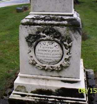 FRY, MATTIE J. - Shelby County, Ohio | MATTIE J. FRY - Ohio Gravestone Photos