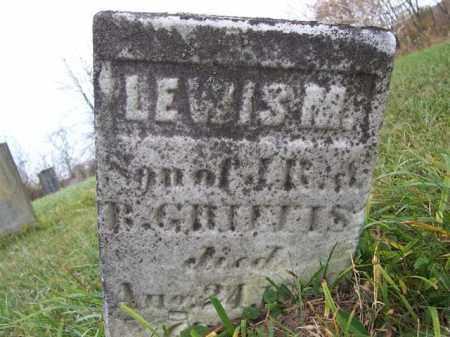 GRIFFIS, LEWIS M - Shelby County, Ohio   LEWIS M GRIFFIS - Ohio Gravestone Photos