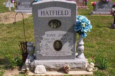 HATFIELD, TONY JAMES - Shelby County, Ohio   TONY JAMES HATFIELD - Ohio Gravestone Photos