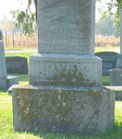 HOYING, JOHANN A. - Shelby County, Ohio   JOHANN A. HOYING - Ohio Gravestone Photos