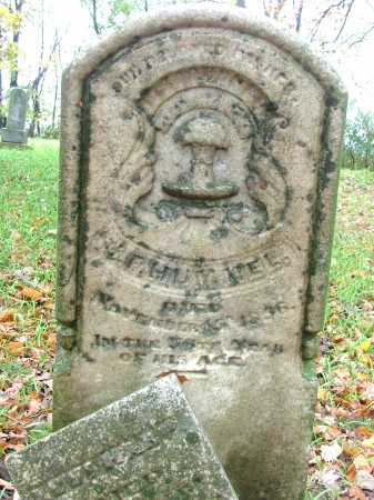 HUMMEL, F - Shelby County, Ohio   F HUMMEL - Ohio Gravestone Photos