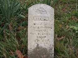 JACKSON, VITULA - Shelby County, Ohio   VITULA JACKSON - Ohio Gravestone Photos
