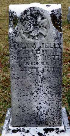 JELLY, ELIZA A. - Shelby County, Ohio | ELIZA A. JELLY - Ohio Gravestone Photos