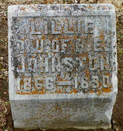 JOHNSTON, LILLIE - Shelby County, Ohio | LILLIE JOHNSTON - Ohio Gravestone Photos