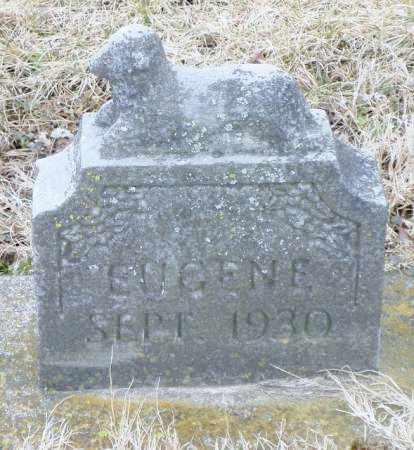 LAUGHLIN, EUGENE - Shelby County, Ohio   EUGENE LAUGHLIN - Ohio Gravestone Photos