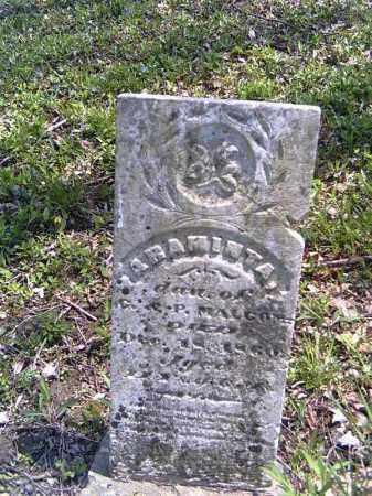 MALCOM, ARAMINTA - Shelby County, Ohio | ARAMINTA MALCOM - Ohio Gravestone Photos