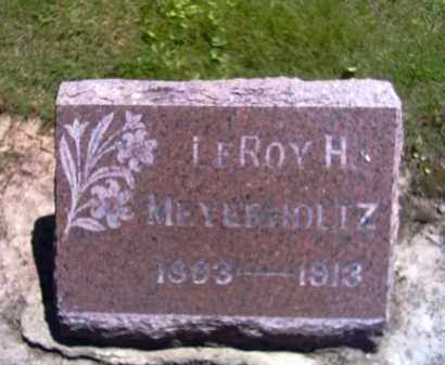 MEYERHOLTZ, LEROY H. - Shelby County, Ohio | LEROY H. MEYERHOLTZ - Ohio Gravestone Photos