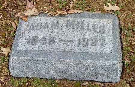 MILLER, ADAM - Shelby County, Ohio | ADAM MILLER - Ohio Gravestone Photos
