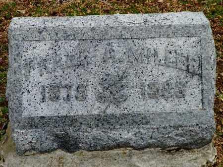 MILLER, FRANK - Shelby County, Ohio   FRANK MILLER - Ohio Gravestone Photos