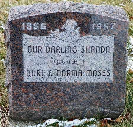 MOSES, SHANDA - Shelby County, Ohio | SHANDA MOSES - Ohio Gravestone Photos
