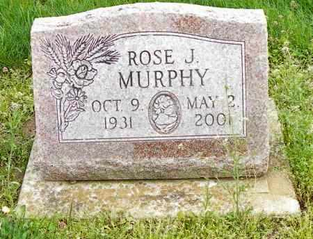 MURPHY, ROSE J. - Shelby County, Ohio | ROSE J. MURPHY - Ohio Gravestone Photos