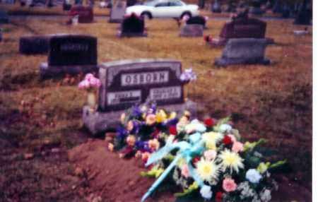 OSBORN, EMMA - Shelby County, Ohio | EMMA OSBORN - Ohio Gravestone Photos
