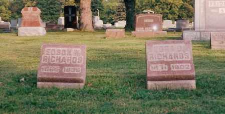RICHARDS, EDSON - Shelby County, Ohio | EDSON RICHARDS - Ohio Gravestone Photos