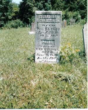 RICHARDSON, PHEBE - Shelby County, Ohio   PHEBE RICHARDSON - Ohio Gravestone Photos