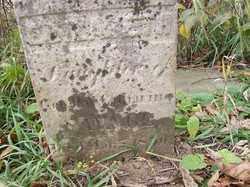 SAVAGE, GEORGE - Shelby County, Ohio | GEORGE SAVAGE - Ohio Gravestone Photos
