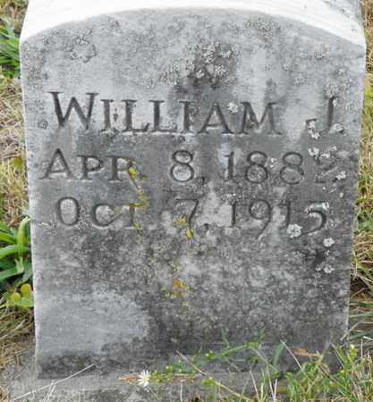 SCHAFER, WILLIAM J. - Shelby County, Ohio | WILLIAM J. SCHAFER - Ohio Gravestone Photos