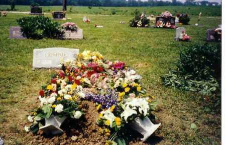 SCHAFFNER, FOREST - Shelby County, Ohio | FOREST SCHAFFNER - Ohio Gravestone Photos