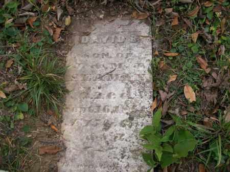 SEAMAN, DAVID - Shelby County, Ohio | DAVID SEAMAN - Ohio Gravestone Photos