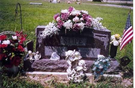 SLIFE, PHYLLIS - Shelby County, Ohio | PHYLLIS SLIFE - Ohio Gravestone Photos