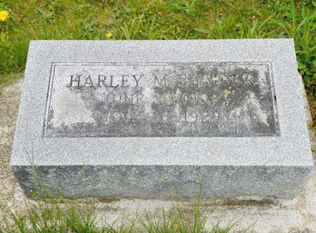 SNYDER, HARLEY M. - Shelby County, Ohio | HARLEY M. SNYDER - Ohio Gravestone Photos