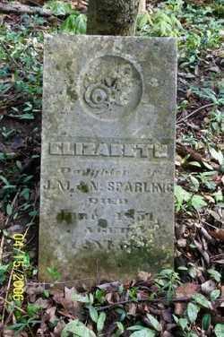 SPARLING, ELIZABETH - Shelby County, Ohio | ELIZABETH SPARLING - Ohio Gravestone Photos