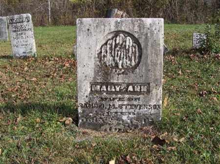 STEVENSON, MARY ANN - Shelby County, Ohio | MARY ANN STEVENSON - Ohio Gravestone Photos