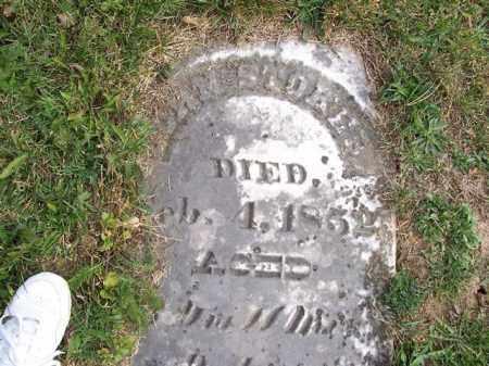 STOKER, JOHN - Shelby County, Ohio   JOHN STOKER - Ohio Gravestone Photos
