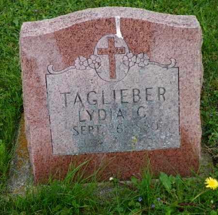TAGLIEBER, LYDIA C. - Shelby County, Ohio | LYDIA C. TAGLIEBER - Ohio Gravestone Photos