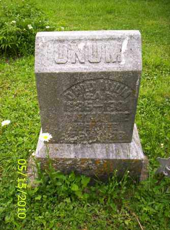 UNUM, CATHERINE - Shelby County, Ohio | CATHERINE UNUM - Ohio Gravestone Photos