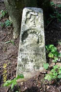 WAGNER, MARGARET ADELMA - Shelby County, Ohio | MARGARET ADELMA WAGNER - Ohio Gravestone Photos