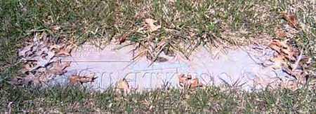WATKINS, DARRON A. - Shelby County, Ohio | DARRON A. WATKINS - Ohio Gravestone Photos