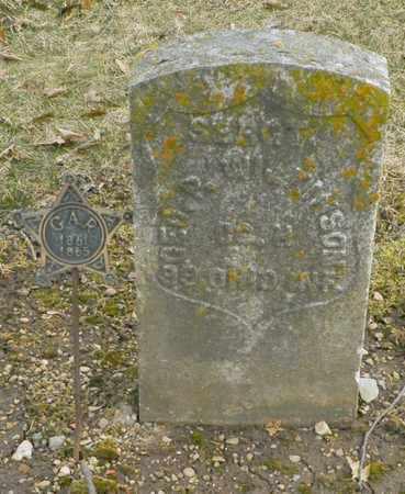 WILKINSON, GEORGE P. - Shelby County, Ohio | GEORGE P. WILKINSON - Ohio Gravestone Photos