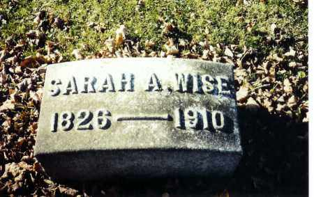 WISE, SARAH A. - Shelby County, Ohio   SARAH A. WISE - Ohio Gravestone Photos