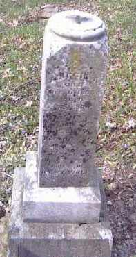 WOLF, MAGGIE A. - Shelby County, Ohio | MAGGIE A. WOLF - Ohio Gravestone Photos