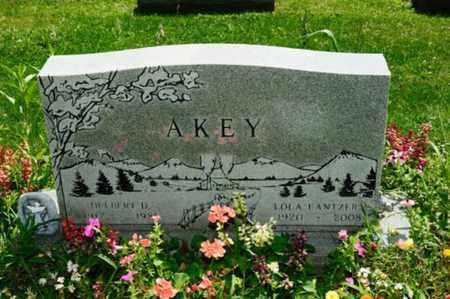 LANTZER AKEY, LOLA - Stark County, Ohio | LOLA LANTZER AKEY - Ohio Gravestone Photos