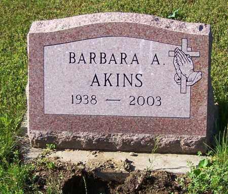 AKINS, BARBARA A. - Stark County, Ohio | BARBARA A. AKINS - Ohio Gravestone Photos