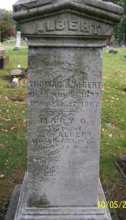 SPICER ALBERT, EDITH M. - Stark County, Ohio | EDITH M. SPICER ALBERT - Ohio Gravestone Photos