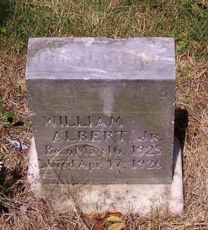ALBERT, WILLIAM (JR) - Stark County, Ohio | WILLIAM (JR) ALBERT - Ohio Gravestone Photos