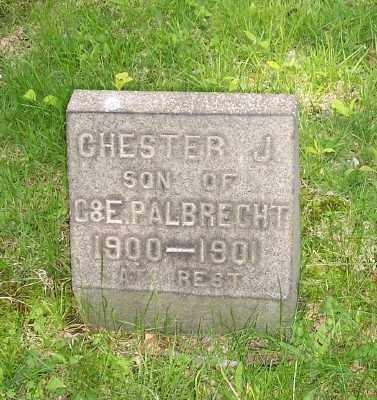 ALBRECHT, CHESTER J. - Stark County, Ohio | CHESTER J. ALBRECHT - Ohio Gravestone Photos
