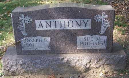 ANTHONY, SUE M. - Stark County, Ohio | SUE M. ANTHONY - Ohio Gravestone Photos