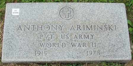 ARIMINSKI, ANTHONY - Stark County, Ohio | ANTHONY ARIMINSKI - Ohio Gravestone Photos