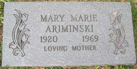 ARIMINSKI, MARY MARIE - Stark County, Ohio | MARY MARIE ARIMINSKI - Ohio Gravestone Photos