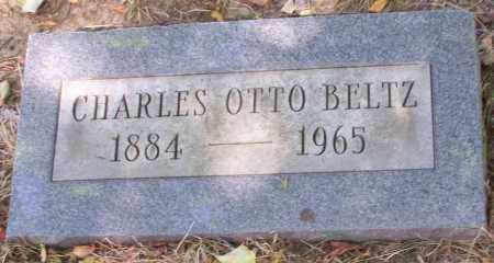 BELTZ, CHARLES OTTO - Stark County, Ohio | CHARLES OTTO BELTZ - Ohio Gravestone Photos