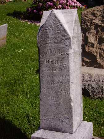 BERG, ELIZABETH - MONUMENT - Stark County, Ohio | ELIZABETH - MONUMENT BERG - Ohio Gravestone Photos