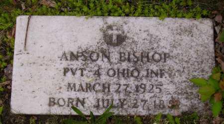 BISHOP, ANSON - Stark County, Ohio | ANSON BISHOP - Ohio Gravestone Photos