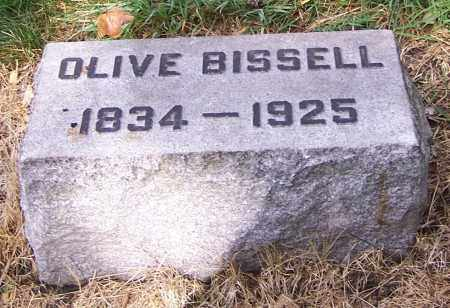 BISSELL, OLIVE - Stark County, Ohio | OLIVE BISSELL - Ohio Gravestone Photos
