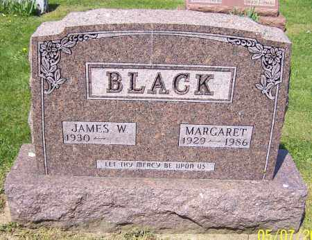 BLACK, JAMES W. - Stark County, Ohio | JAMES W. BLACK - Ohio Gravestone Photos